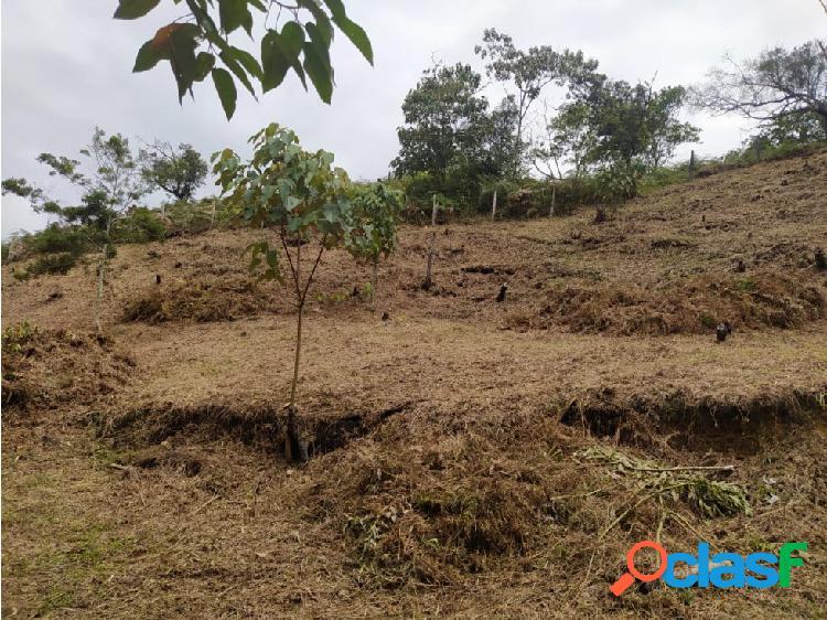 Venta lote rionegro sector ojo de agua, 1.500 m2 $225 millones