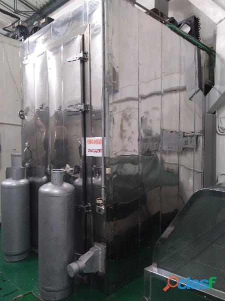Máquinaria Completa Procesamiento y Empacado para la Industria Agroalimentaria 4