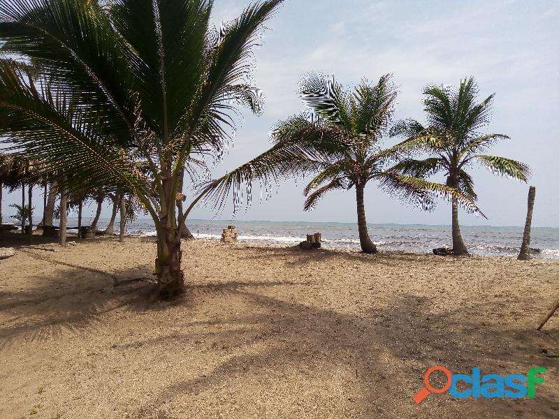 Lotes en La Playa de Palomino, La Guajira