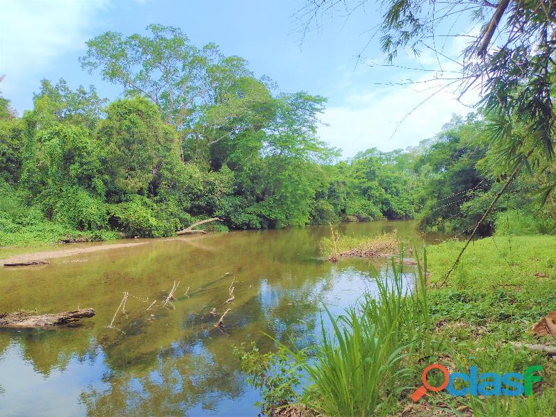 Finca con Rio y Playa en Palomino, Colombia 8