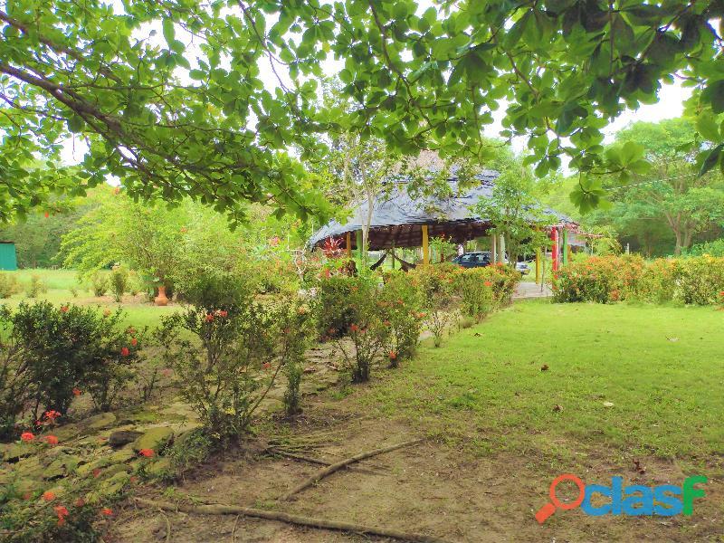 Finca con Rio y Playa en Palomino, Colombia 10