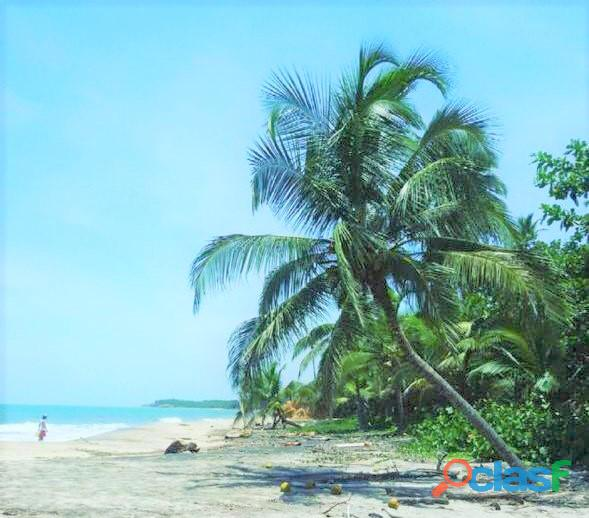 Terreno frente a la playa de palomino, la guajira, colombia
