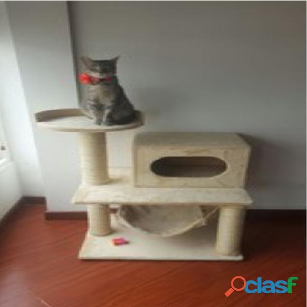 Gimnacios para gatos