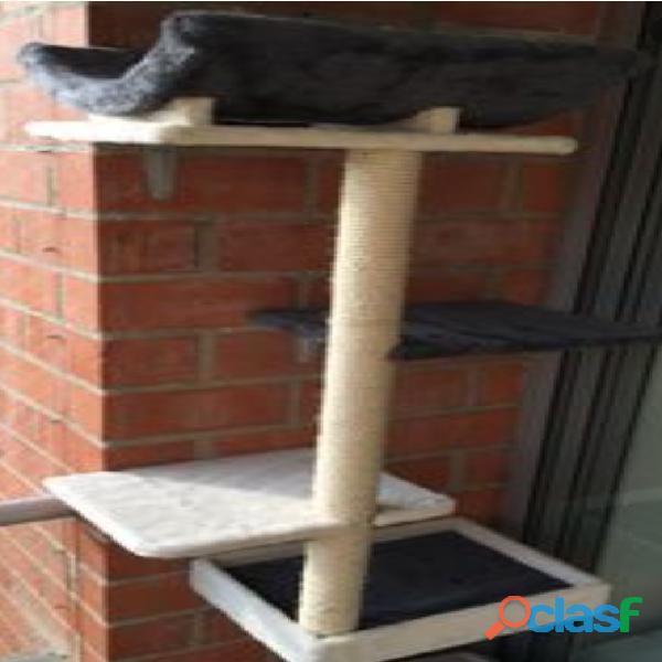 Gimnacios para gatos 10