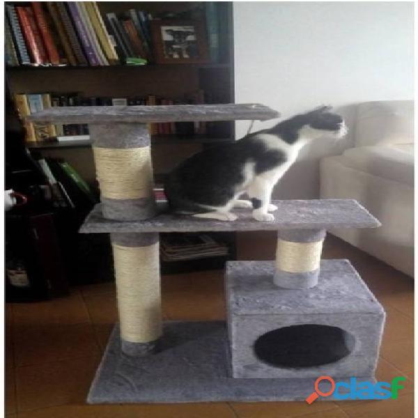 Gimnacios para gatos 8