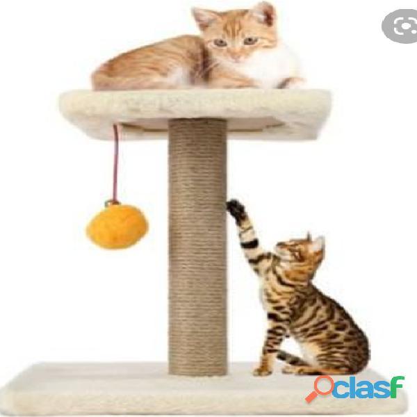Gimnacios para gatos 6