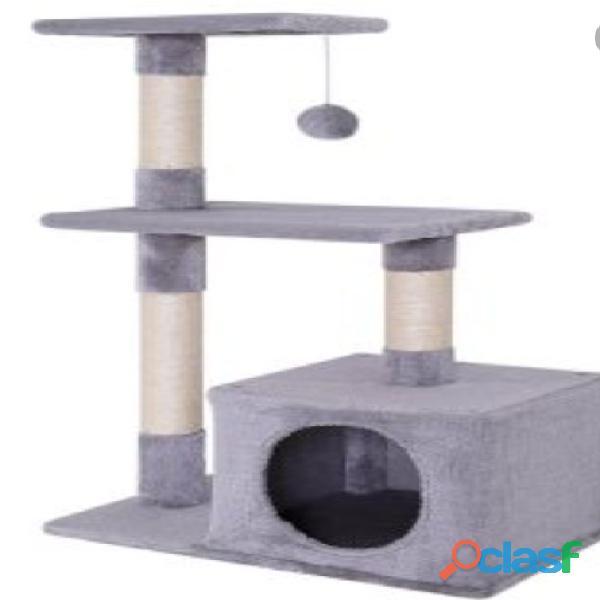 Gimnacios para gatos 1