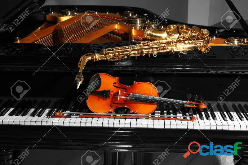 Violinista profesional para Matrimonios